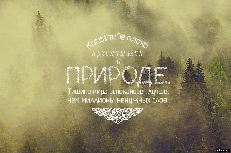 Фразы о природе в картинках