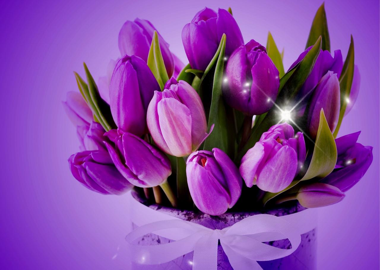 Картинки тюльпаны букеты, пресвятой