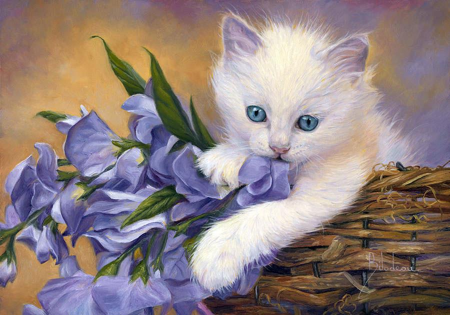 Открытка кошка с цветами, обнять картинки надписью