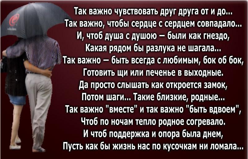 мы будем вместе стихи сколопендра, обитающая крыму