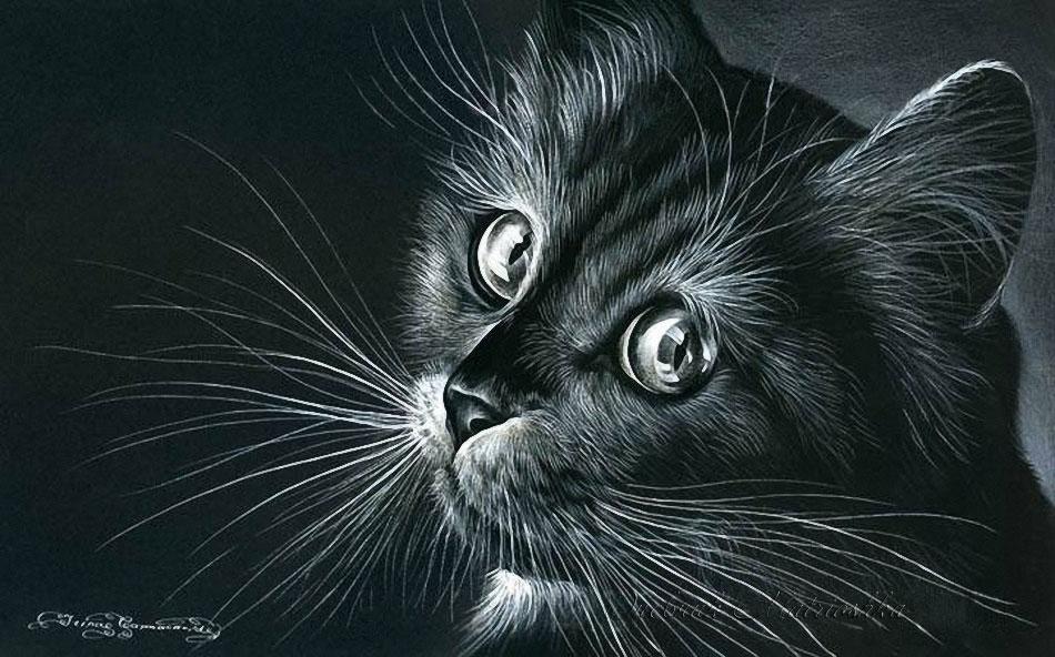 пензы картинки для декупажа котики черно белые цвет или