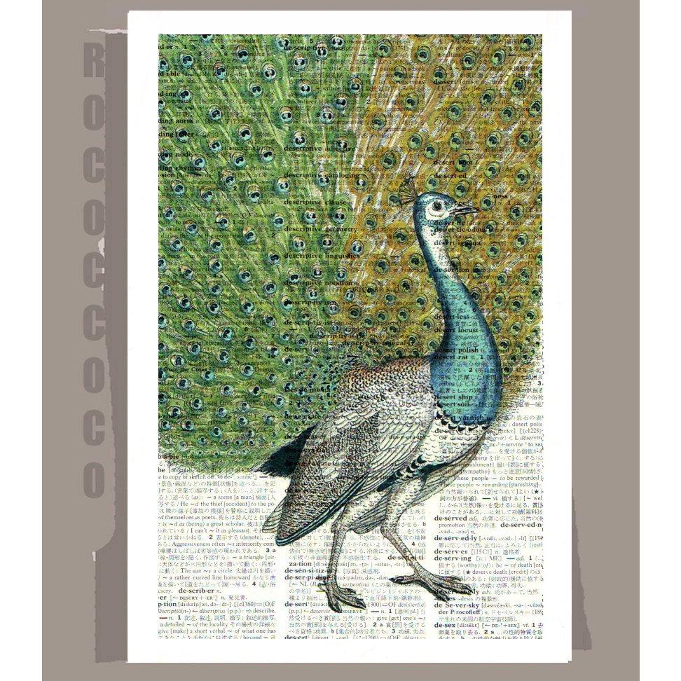 Pavo real v1 arte impreso en reutilizar Vintage Diccionario