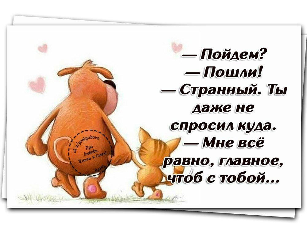 Смешные и красивые картинки со смыслом