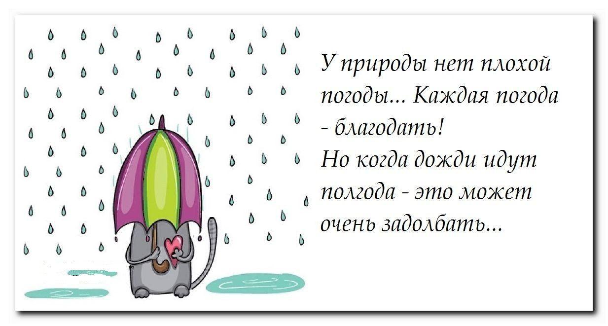 Открытки надоел дождь прикольные, узи смешные прикольные