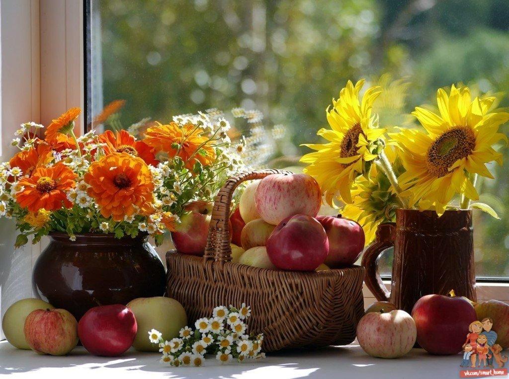 этот прекрасный открытки с осенними цветами с добрым утром тогда же