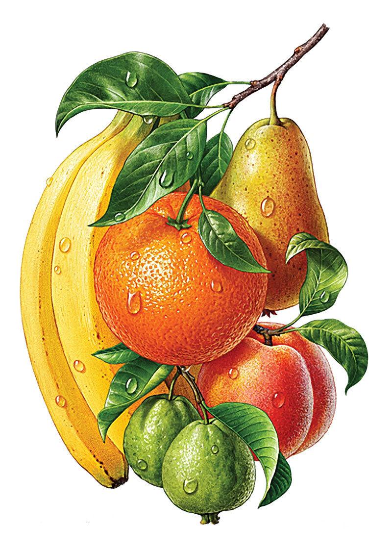 Открытки фрукты и овощи