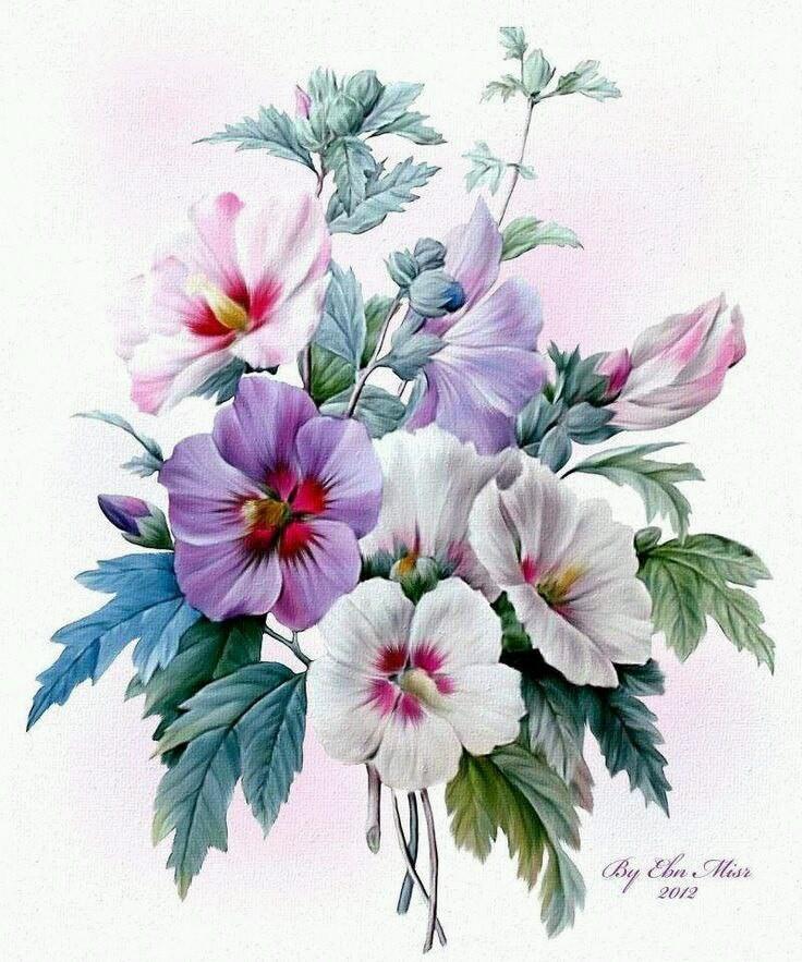 Рисунки цветы открытки, днем рождения мужчину