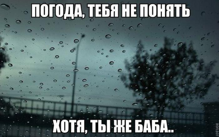 про погоду прикольные картинки