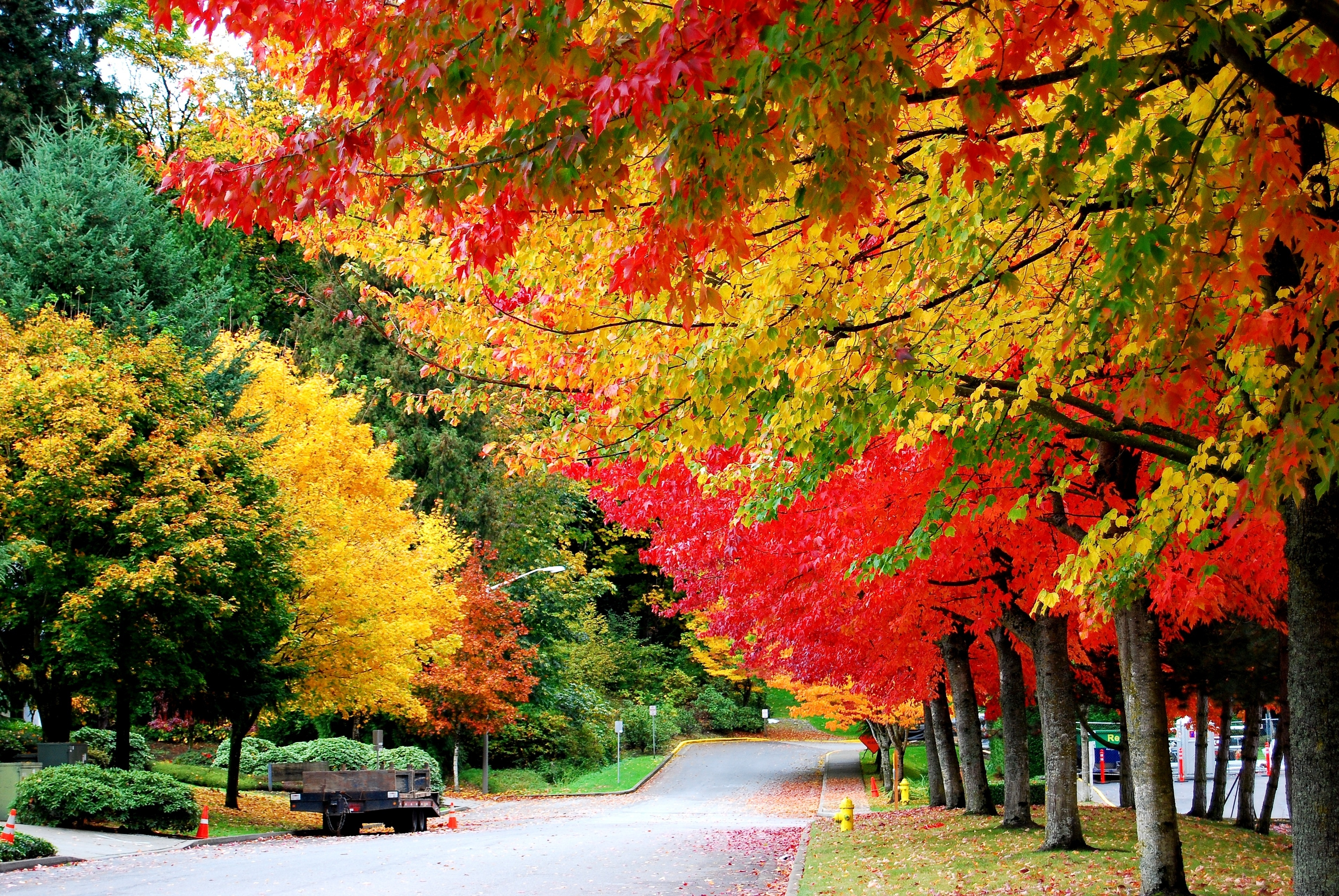 нужно красивые картинки осень все хорошо очень