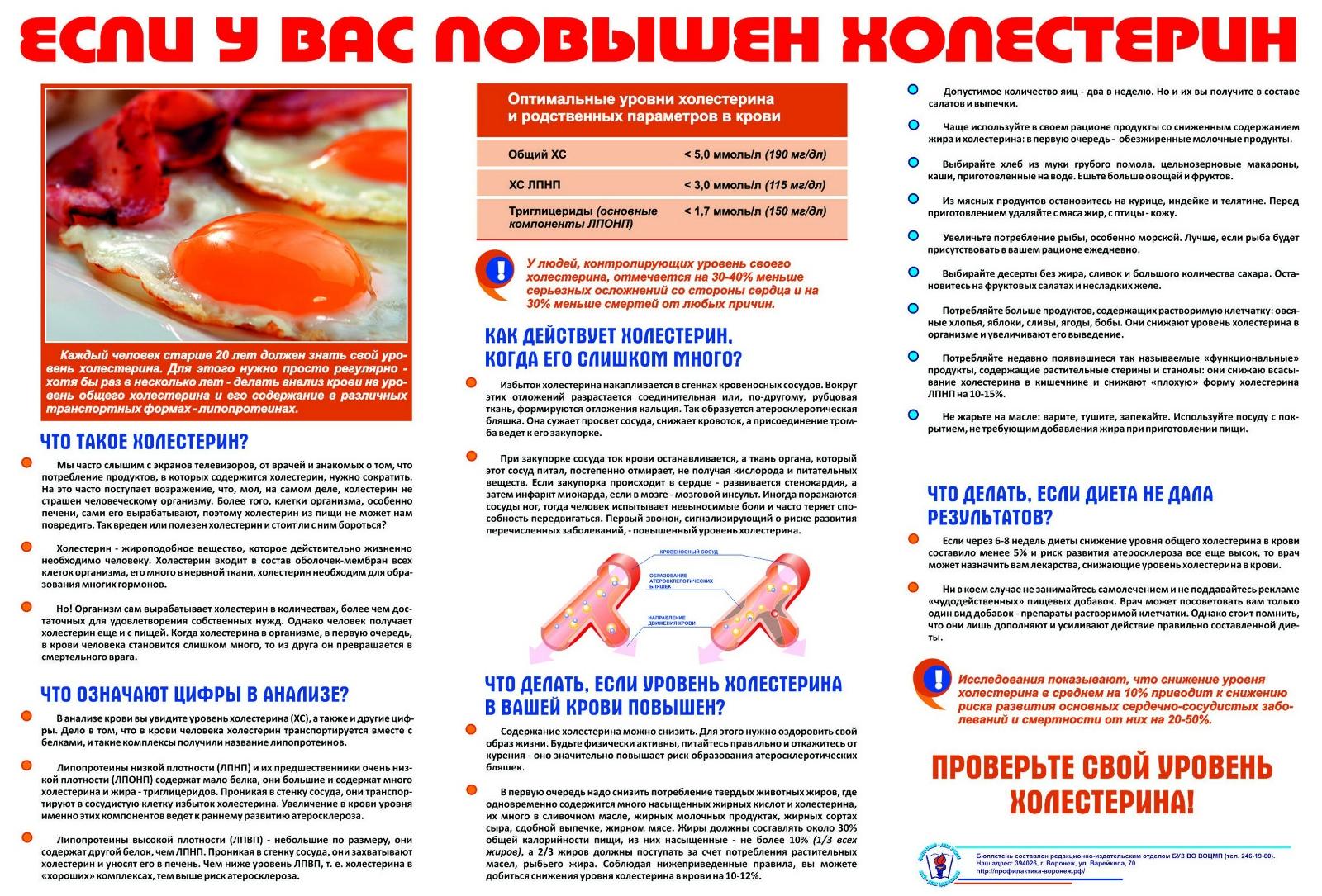Холестериновая Диета Лечение Холестерина. Диета при повышенном уровне холестерина в крови