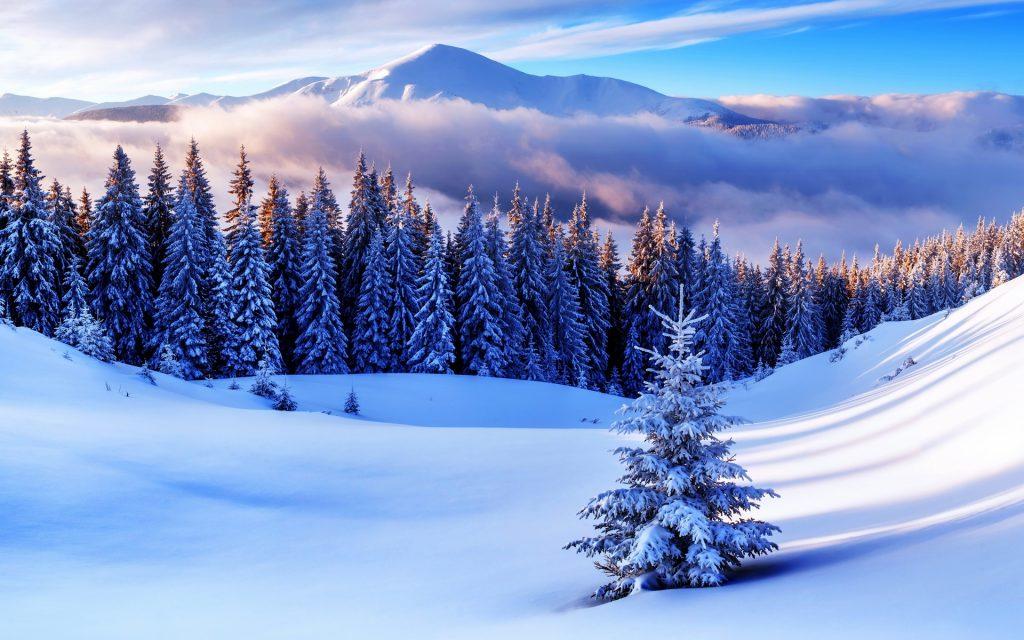 Зимние открытки про природу