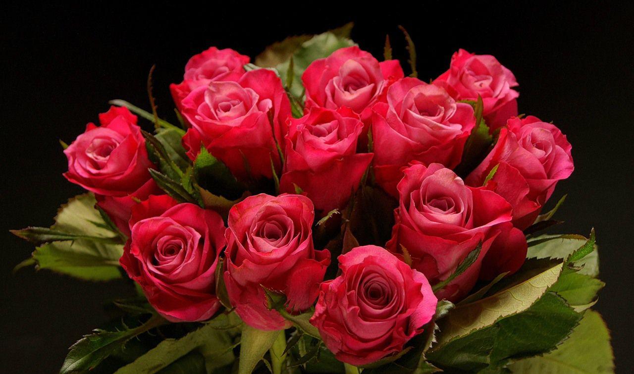 Красивые розы музыкальная открытка