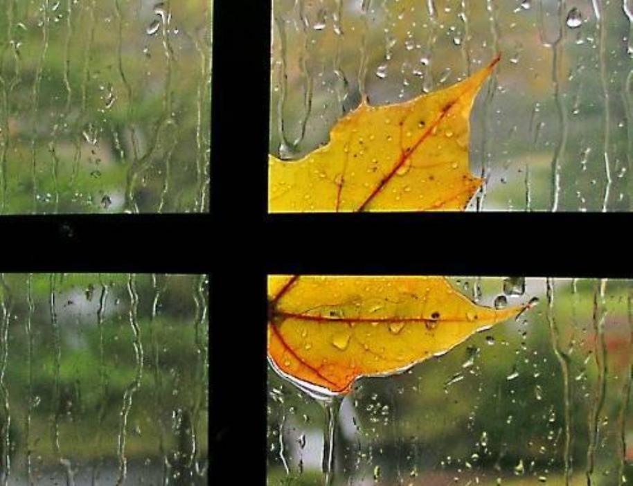 Картинки осень и дождь в окно стучится слушать