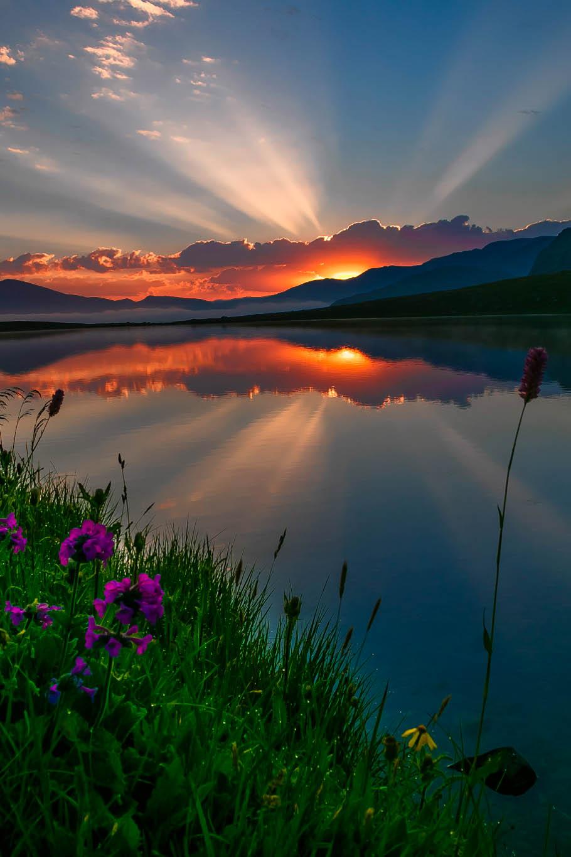 Днем рождения, картинки утро природа красота