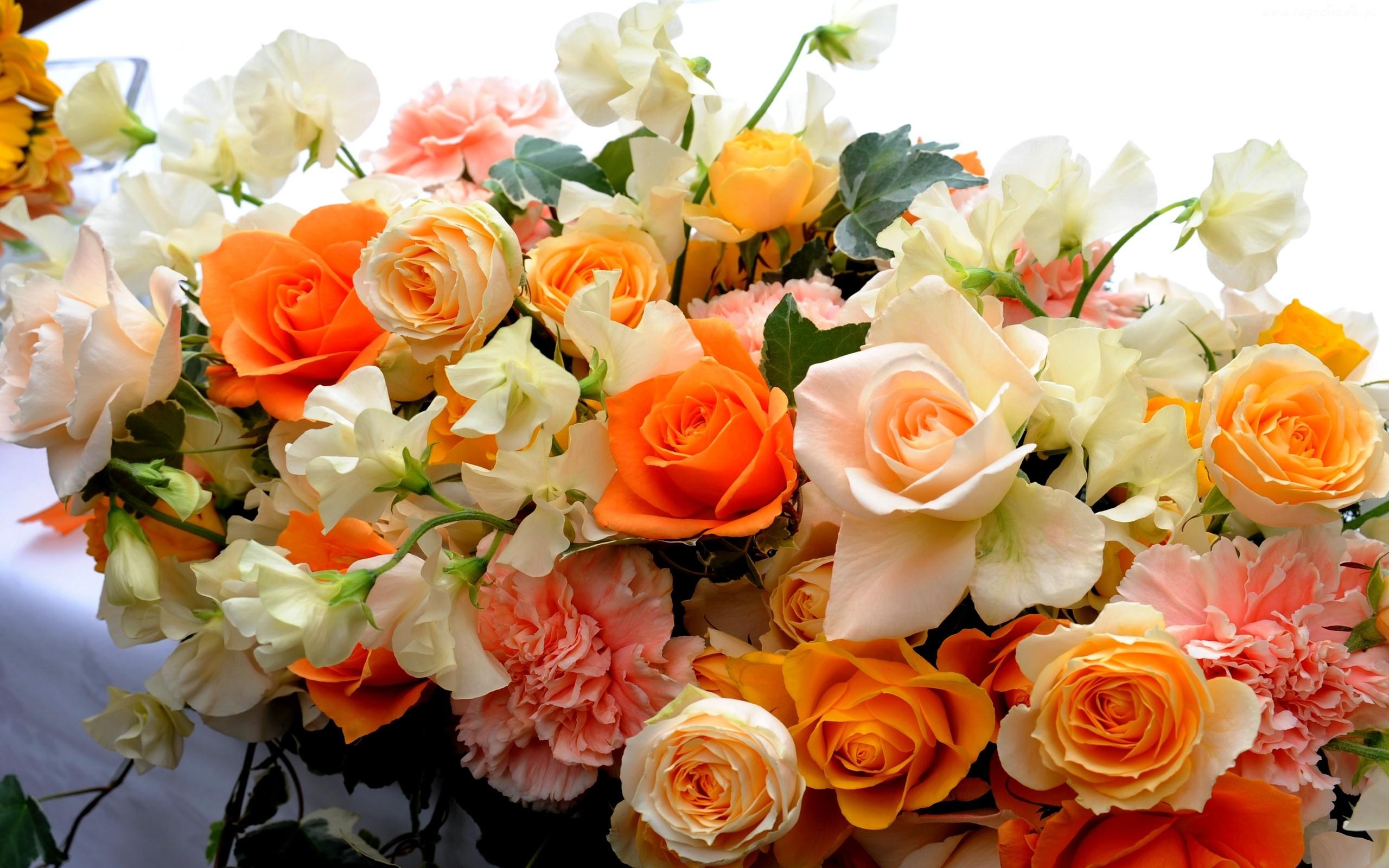слишком открытка розы татьянин день лучко