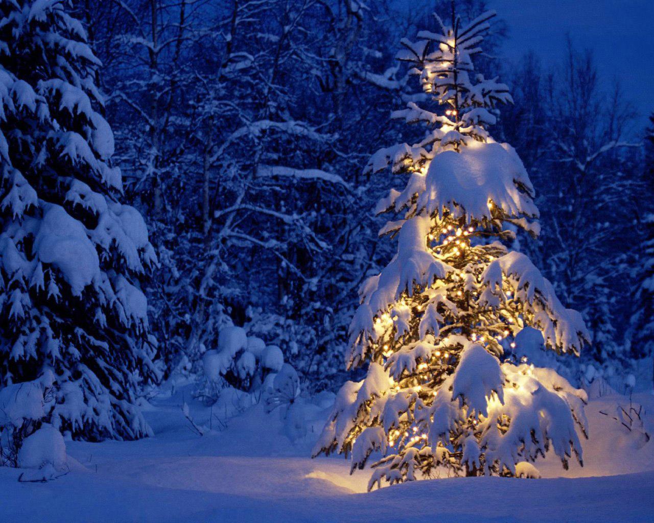 Открытки с зимой красивые