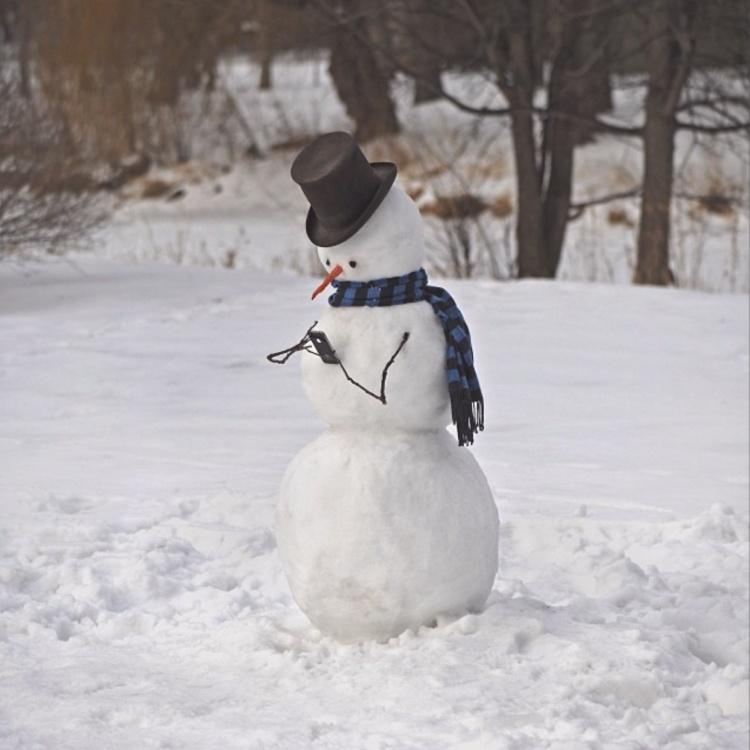 всего снеговик смешные фото станции