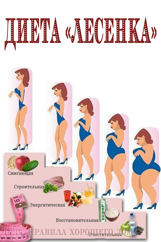 Программа Похудения Лестница.