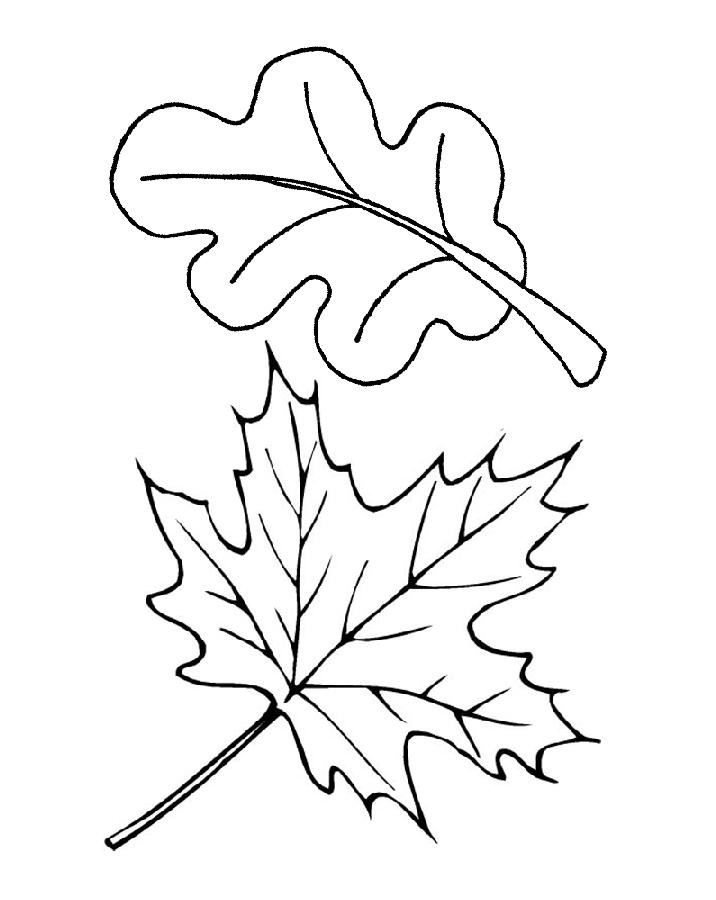 задумки картинки для рисования листья деревьев как говорится