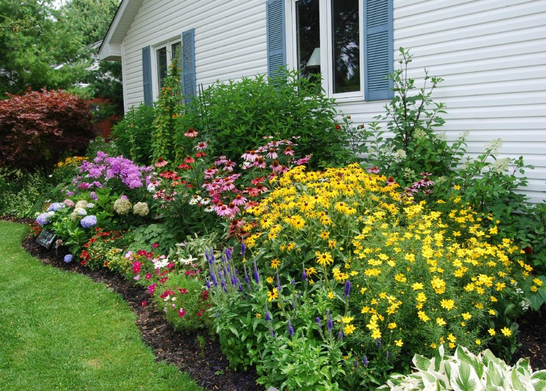 цветник в саду и огороде фото рассмотрели ребятами