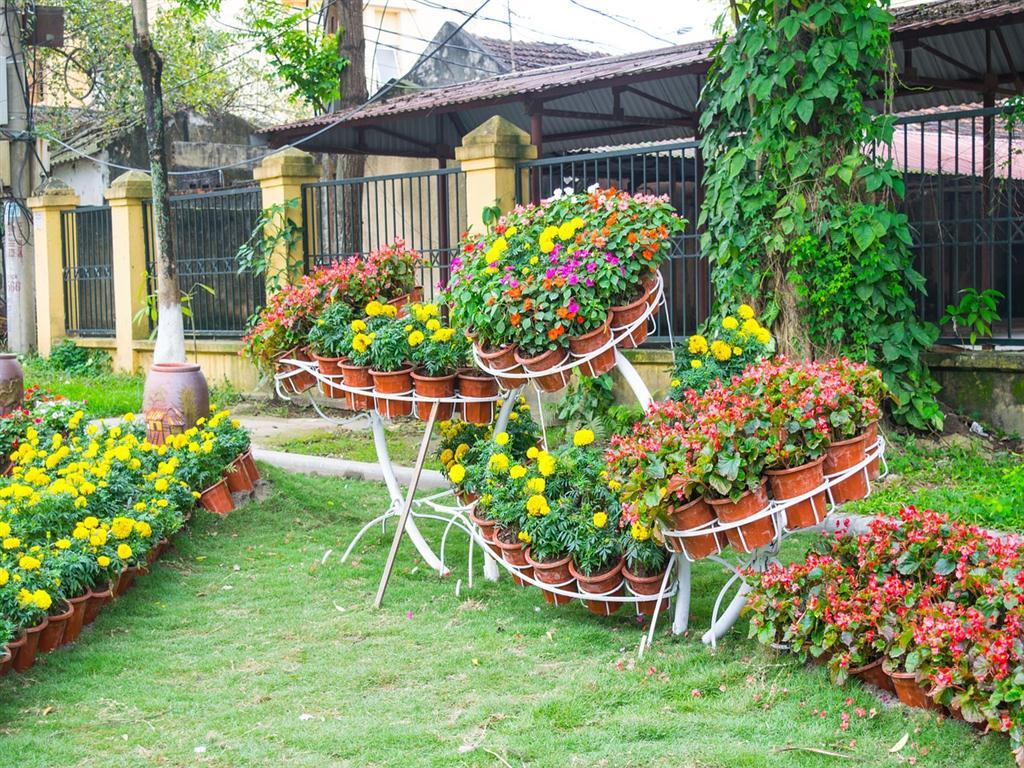дизайн сада цветами своими руками фото