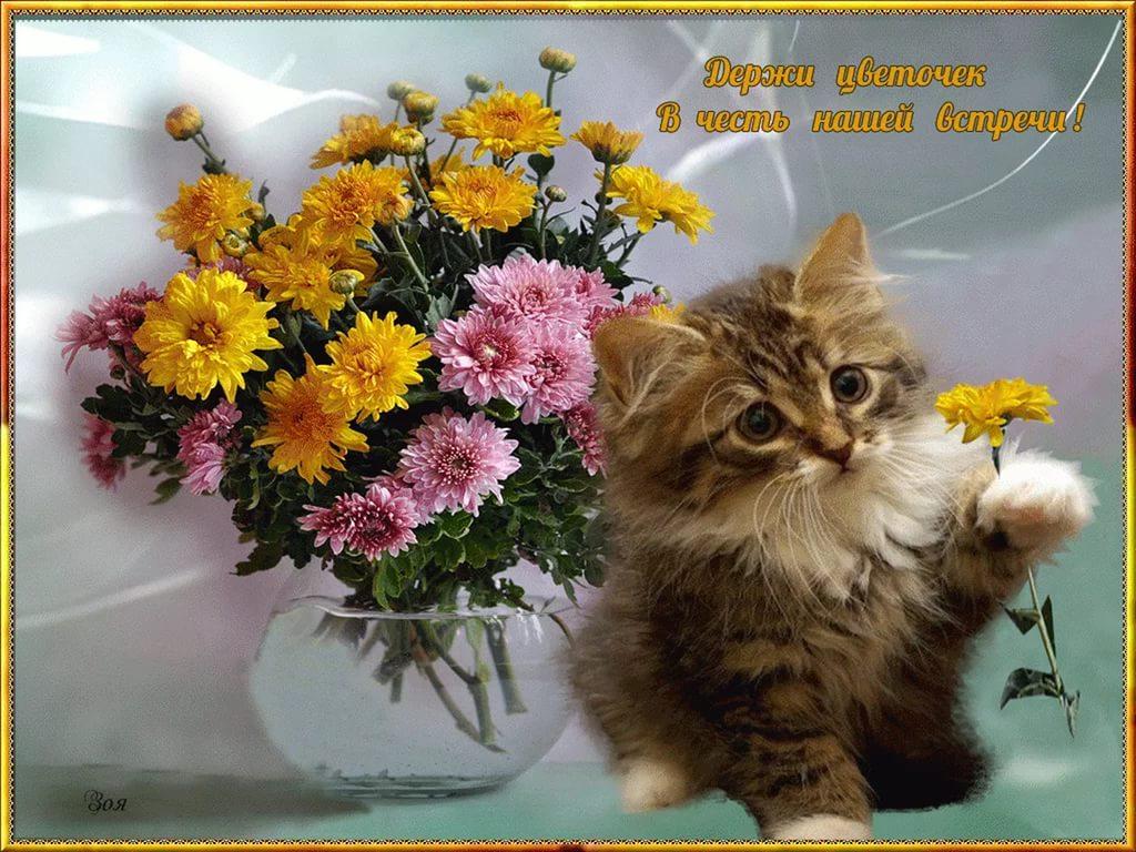 Картинки привет друг с цветами