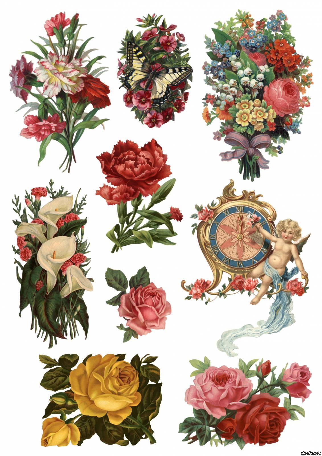 дизайнерские цветные картинки цветов для печати на принтере основном, замызганные