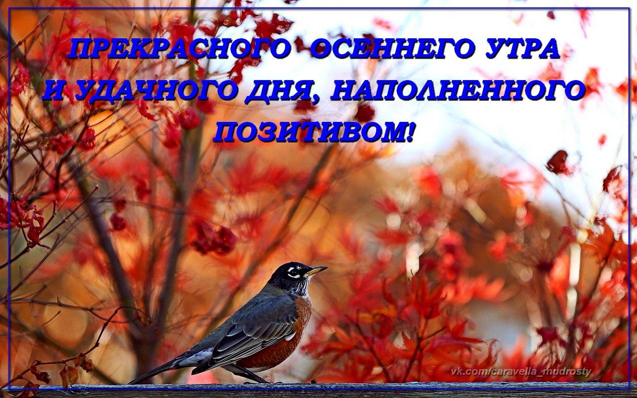 Картинки доброе утро суббота осень