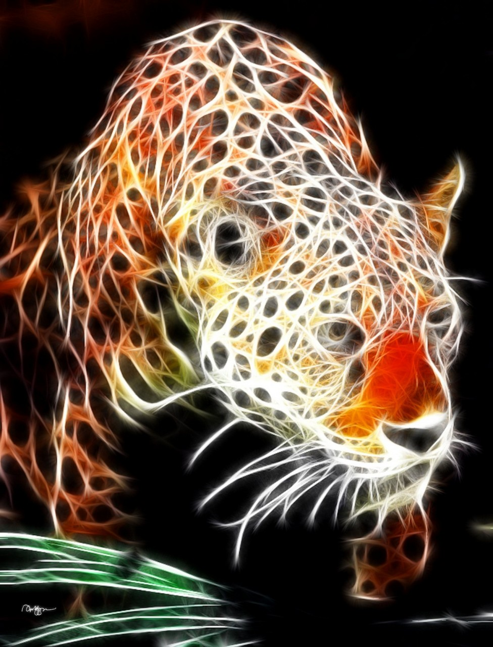 Картинки компьютерная графика животные