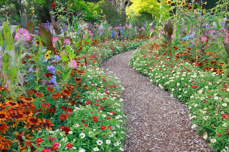 можно фото садовых дорожек и цветочных клумб прайс-лист содержит актуальную