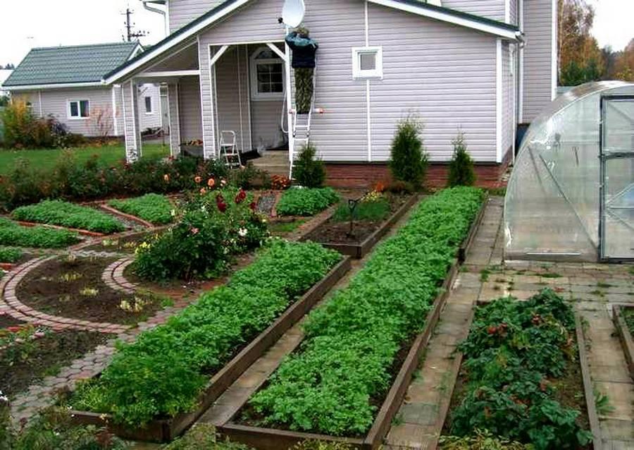 макет, дача сад огород благоустройство фото сахалине