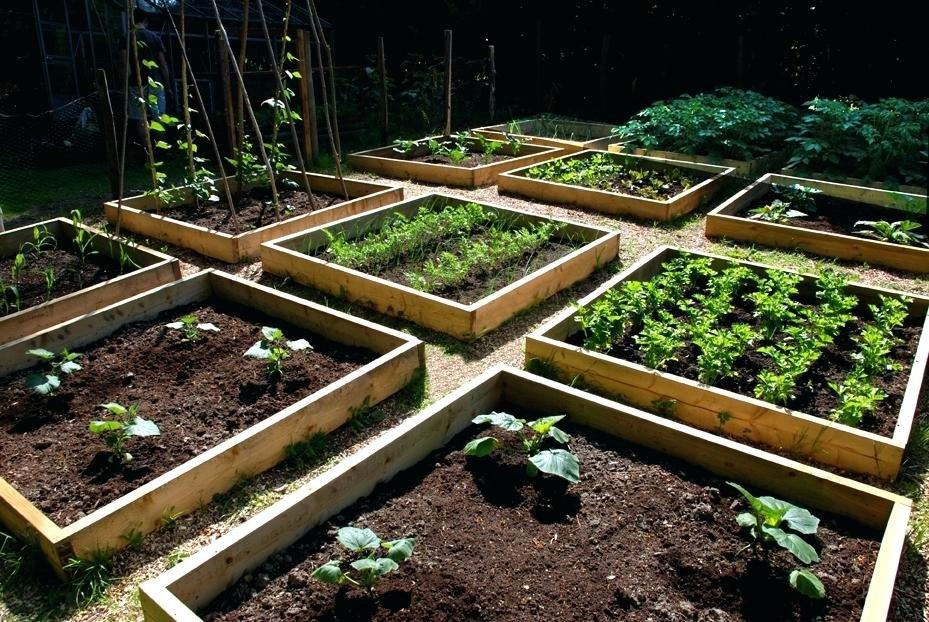 можно красивый сад и огород своими руками фото ритуальных услуг борзе