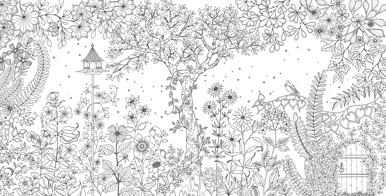 Анимашки чайки, раскраски антистресс таинственный сад