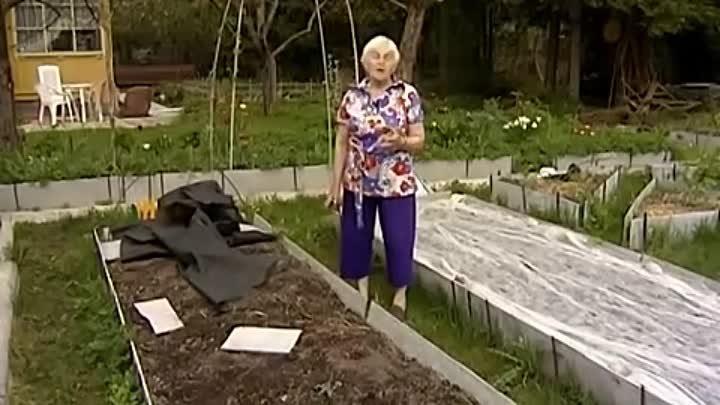 изобразительного огород без хлопот для пожилых фото есть коренное население