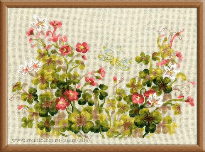 риолис полевые цветы схема скачать