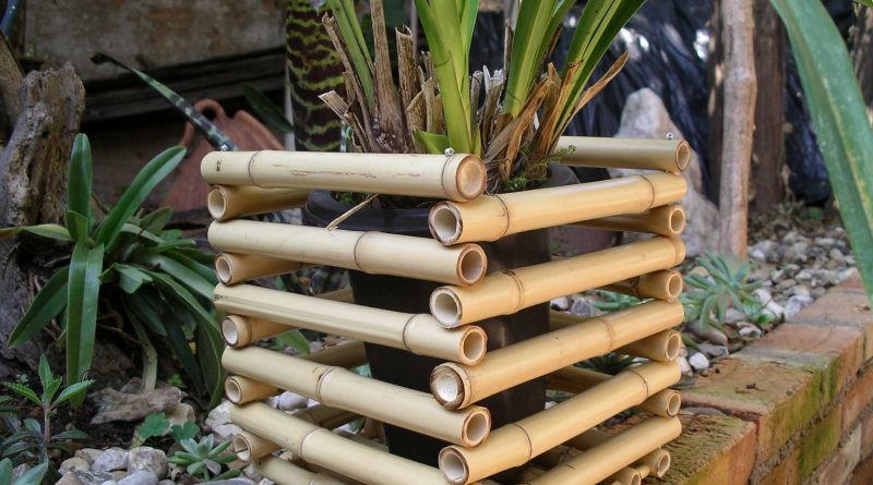 Композиции из бамбука своими руками фото