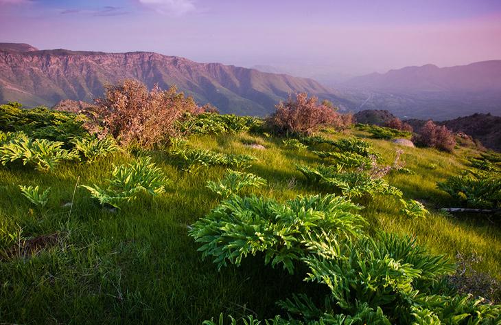 фото узбекистана природа