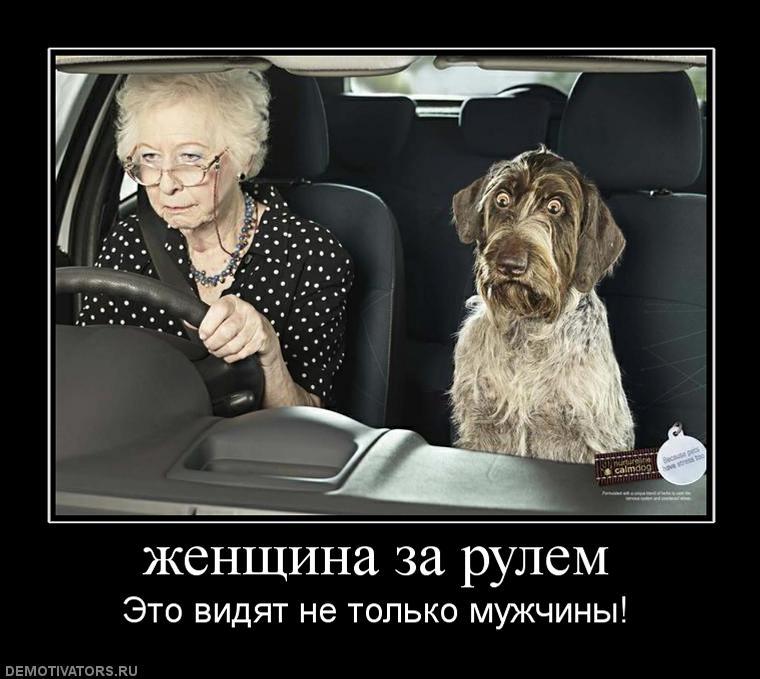Дама за рулем смешные картинки, картинки русскому языку