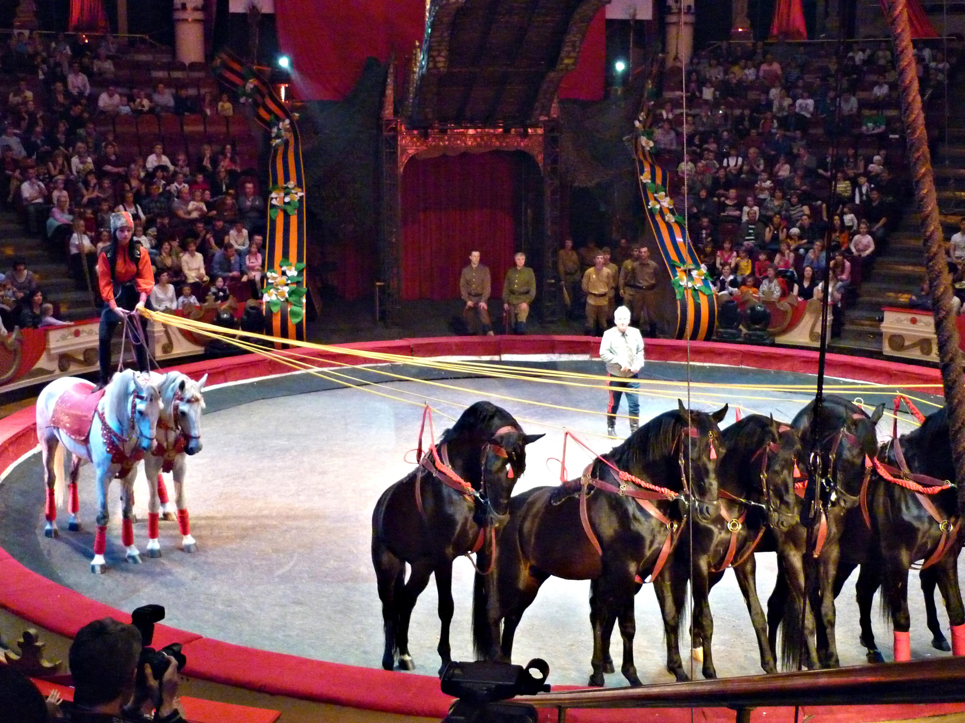 картинка цирк высокое качество предлагаю сделать прочном