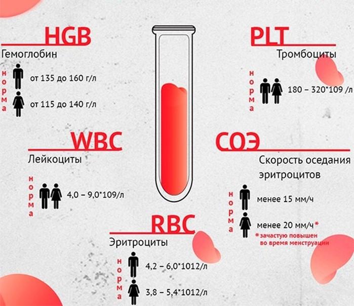 Анализов общего крови сдача врач это ушной
