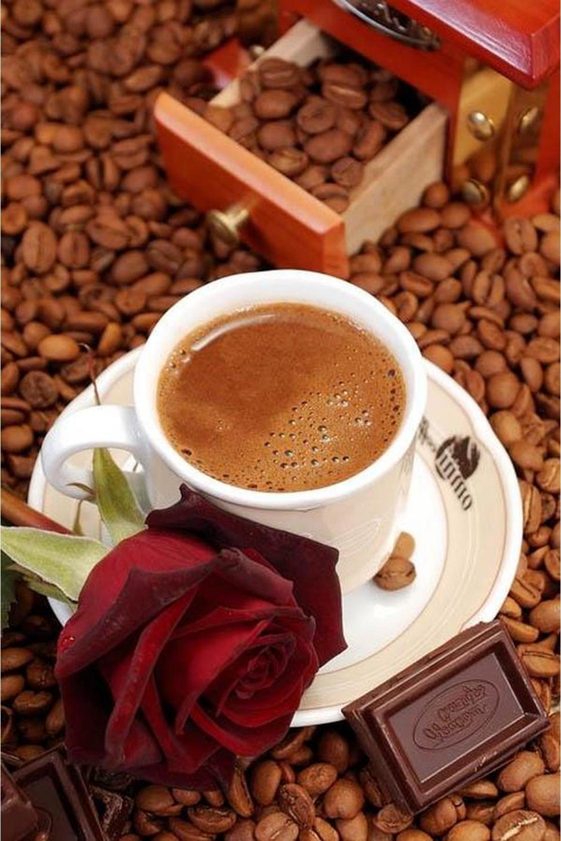 кофе шоколад и цветы картинки анимация месте москвы контексте