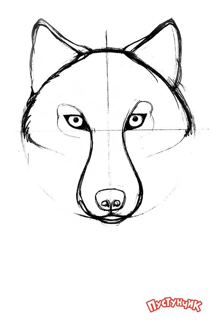 Картинки как рисовать поэтапно волка