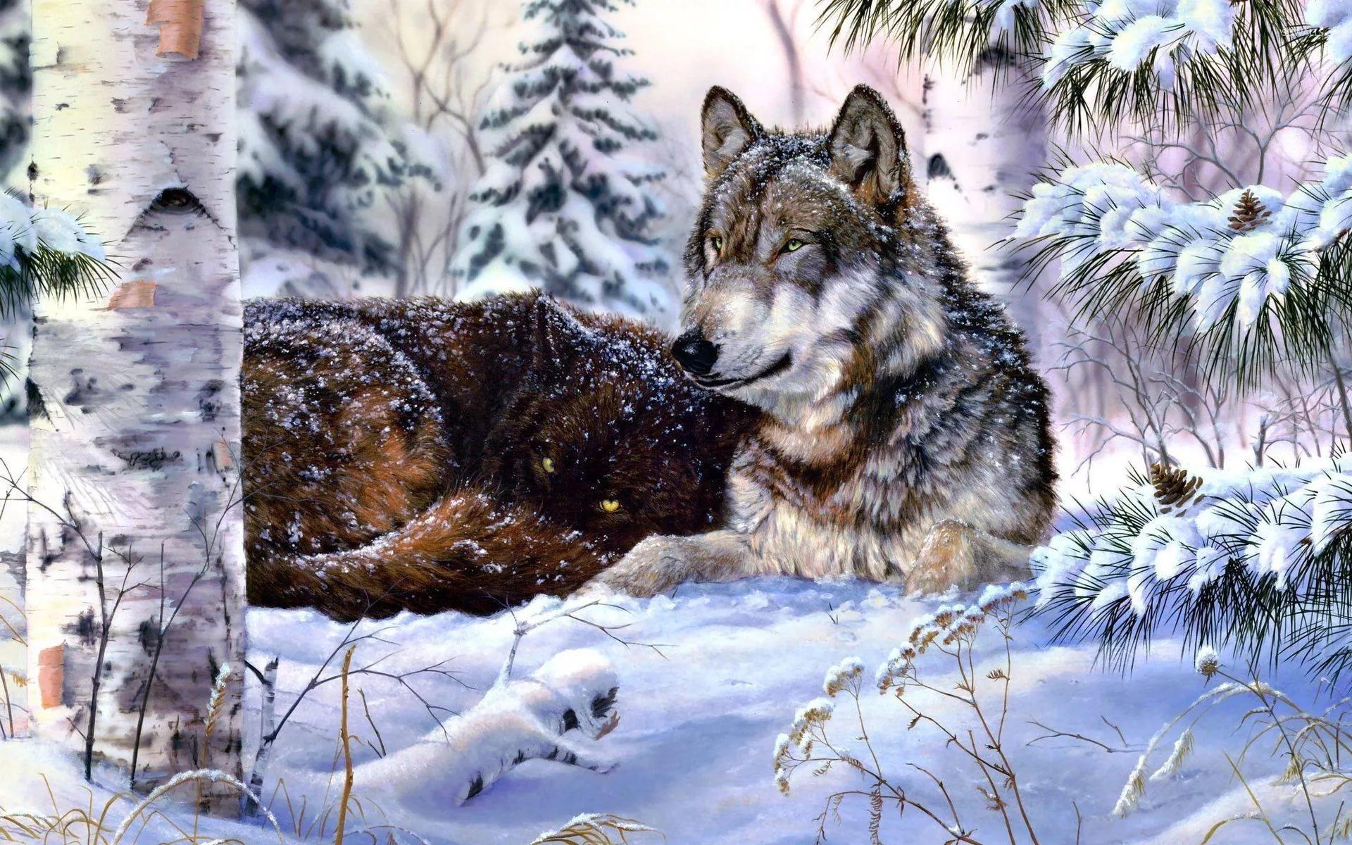 волки зима пейзаж картинки новых друзей
