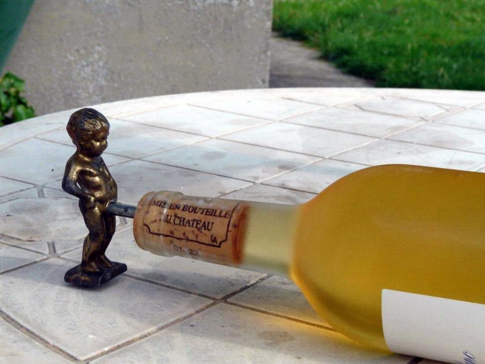 картинки про бутылки смешные новостройке представлены как