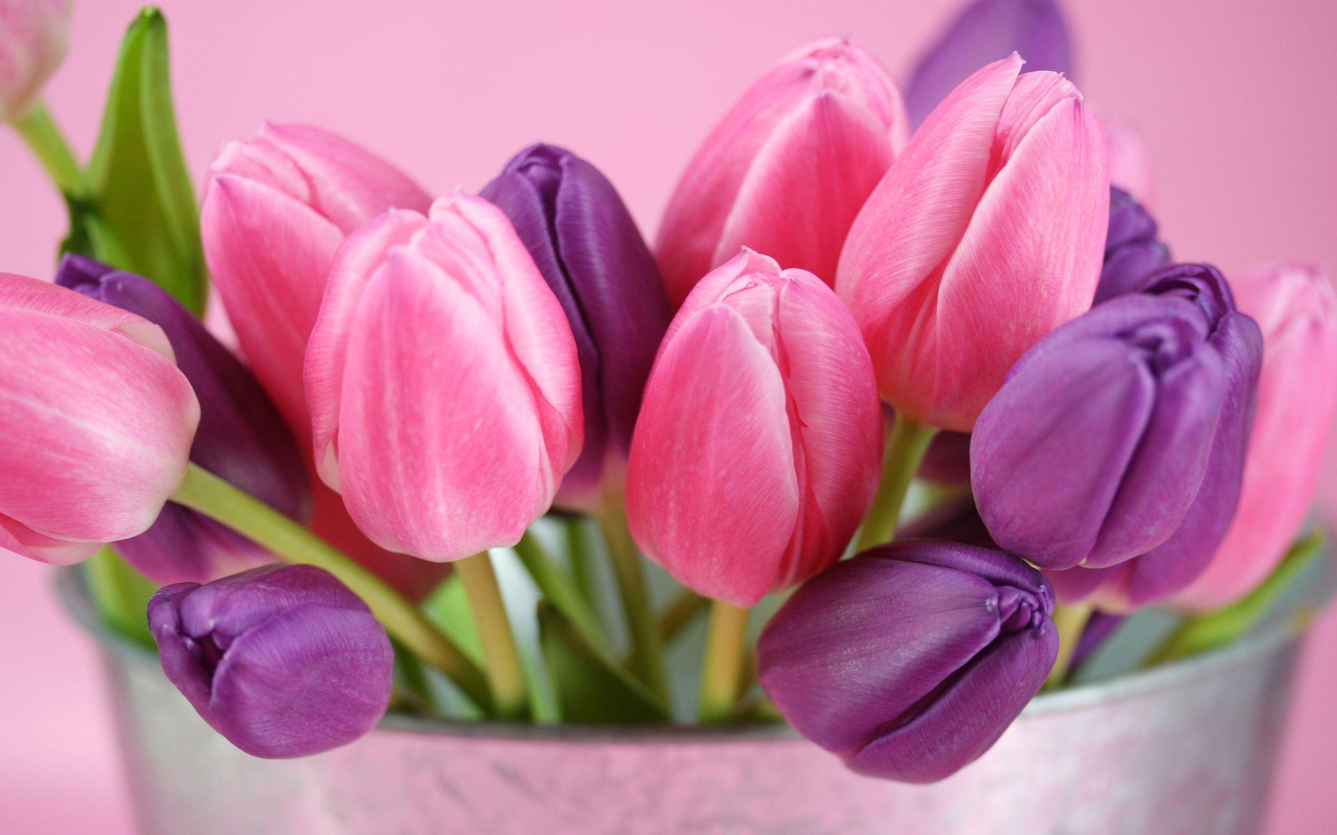 Картинки яркая весна