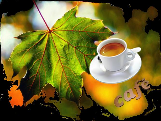открытки доброе утро осенний лист чаще всего отдают