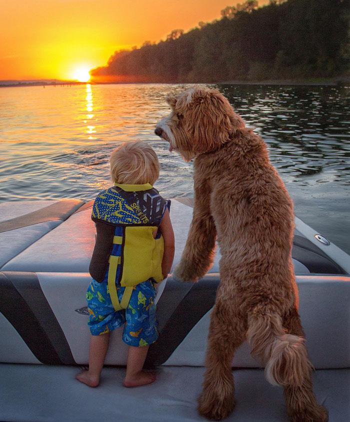 том, самый лучший друг фото маленький