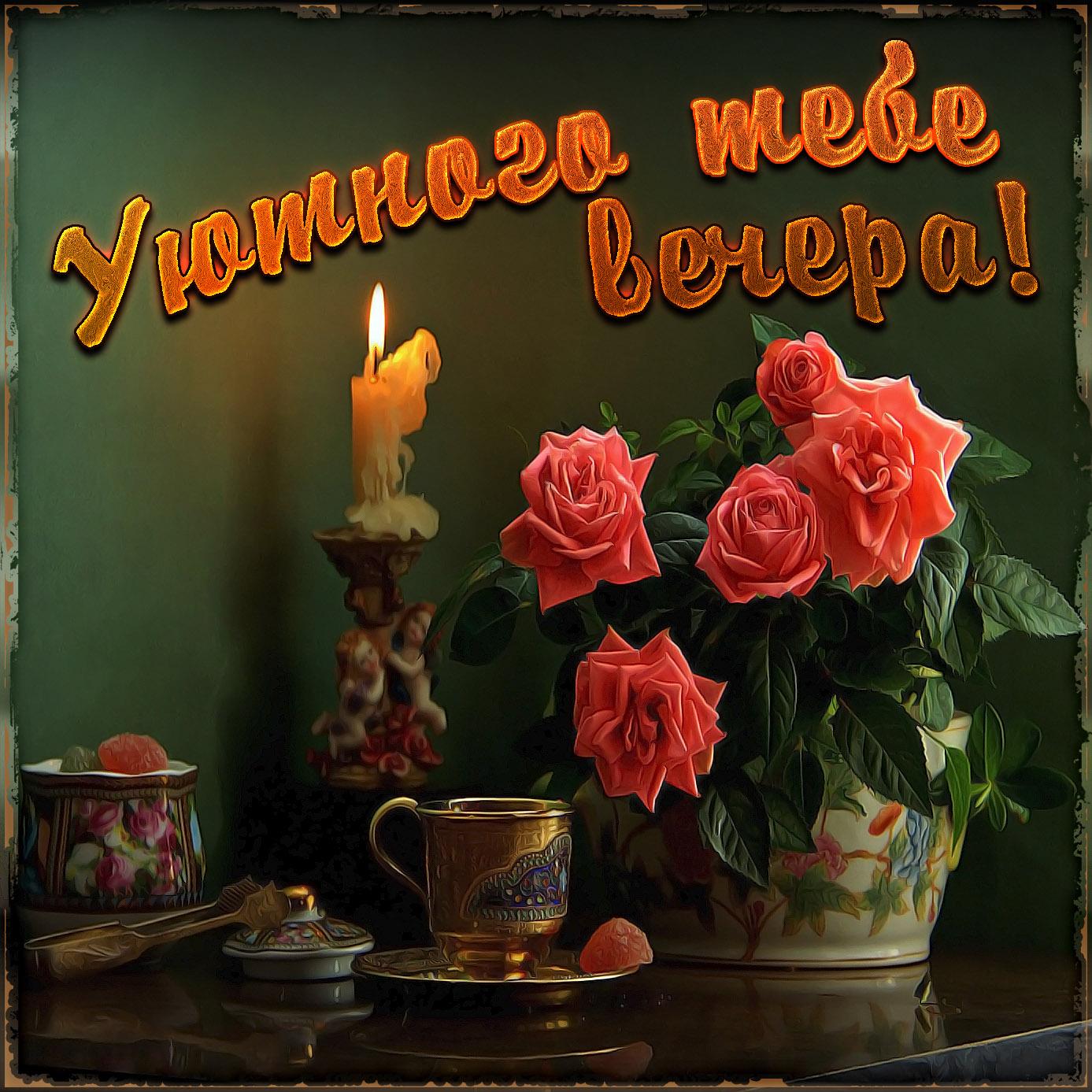 открытки доброго вечера вам хорошего настроения красивые цветы после пластики