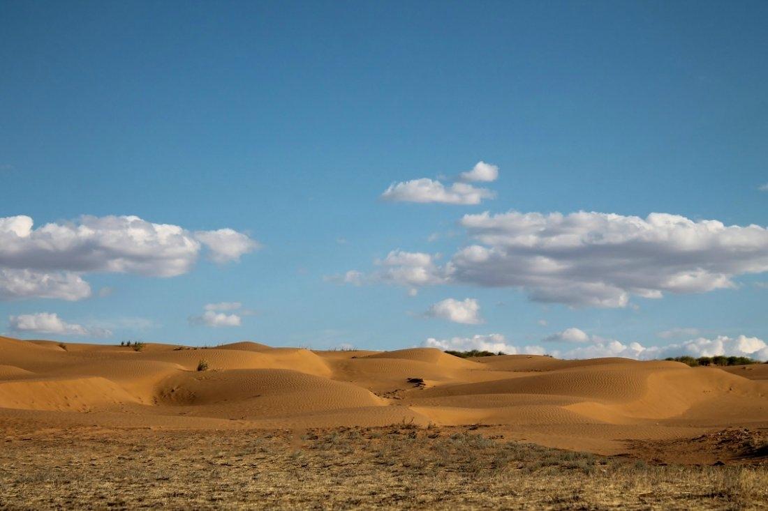 Картинки песчаные степи