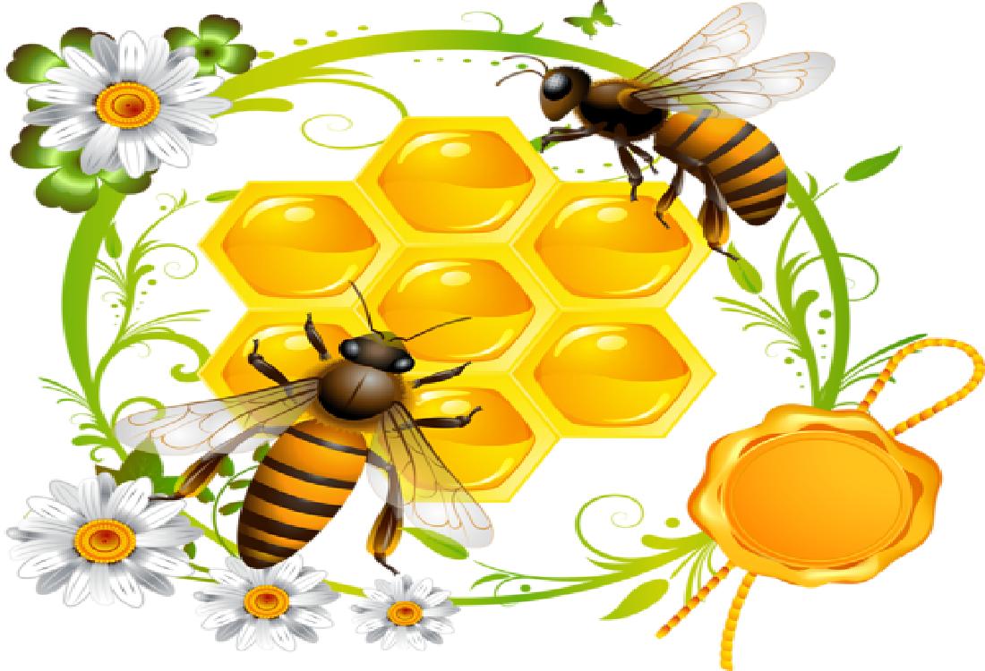 картинки на тему пчелы и медом рецепт здоровья